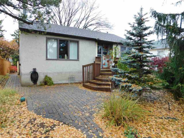 6273 112A Street, Edmonton, AB T6H 3K4 (#E4132793) :: The Foundry Real Estate Company