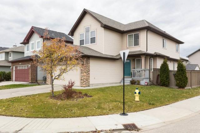 8062 Shaske Drive, Edmonton, AB T6R 3W1 (#E4132881) :: The Foundry Real Estate Company