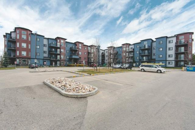 319 392 Silver Berry Road, Edmonton, AB T6T 0H1 (#E4132978) :: The Foundry Real Estate Company