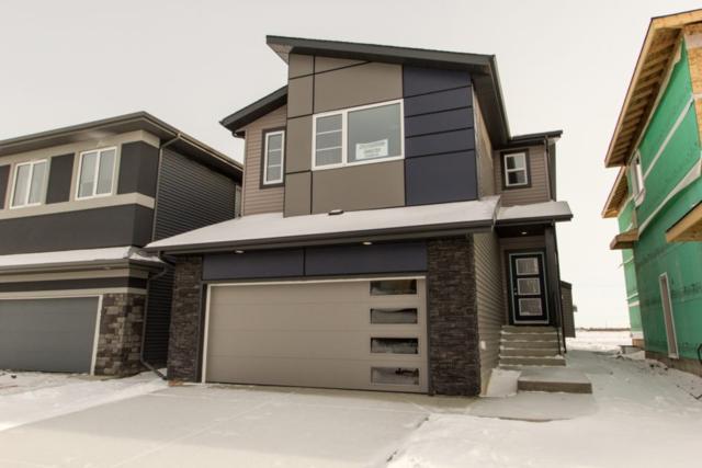 2913 Kostash Drive, Edmonton, AB T6W 3J7 (#E4133074) :: The Foundry Real Estate Company
