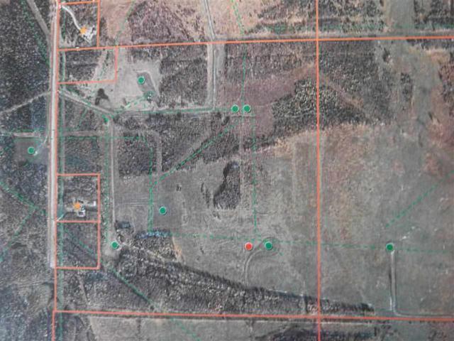 Twp 480 RR 90, Rural Brazeau County, AB T7A 1A1 (#E4133192) :: Müve Team | RE/MAX Elite