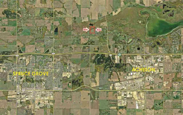 Atim Road South Of Atim Lake, Rural Parkland County, AB T7Y 0B6 (#E4133705) :: The Foundry Real Estate Company