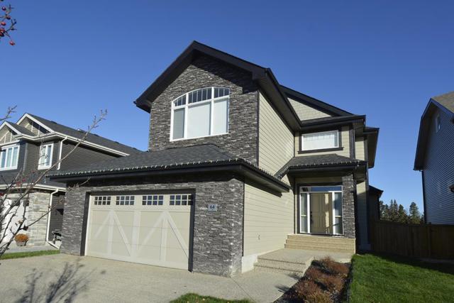 64 Edgewater Terrace, St. Albert, AB T8N 4G7 (#E4133796) :: Müve Team | RE/MAX Elite
