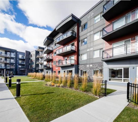 206 7504 Getty Gate, Edmonton, AB T5T 4S8 (#E4133804) :: The Foundry Real Estate Company