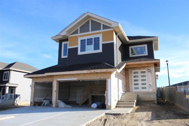 12801 203 Street, Edmonton, AB T5S 0E6 (#E4134120) :: Müve Team | RE/MAX Elite