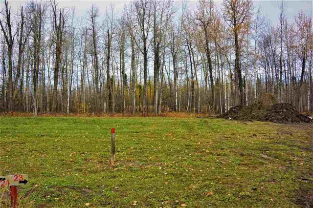 23 River Ravine Estates, Rural Brazeau County, AB T7A 1T9 (#E4134276) :: Initia Real Estate