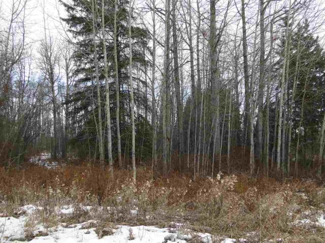 84-4418 Hwy. 633, Rural Lac Ste. Anne County, AB T0E 0L0 (#E4135891) :: Initia Real Estate