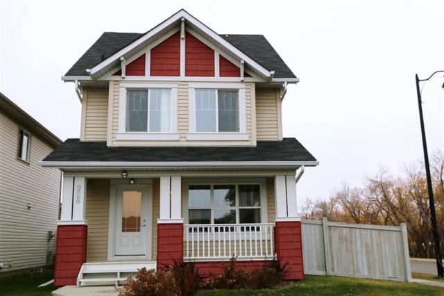 928 Valour Way, Edmonton, AB T5E 6P1 (#E4137164) :: The Foundry Real Estate Company