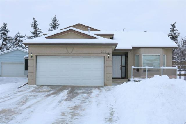 220 Lago Lindo Crescent, Edmonton, AB T5Z 1Y5 (#E4137653) :: The Foundry Real Estate Company