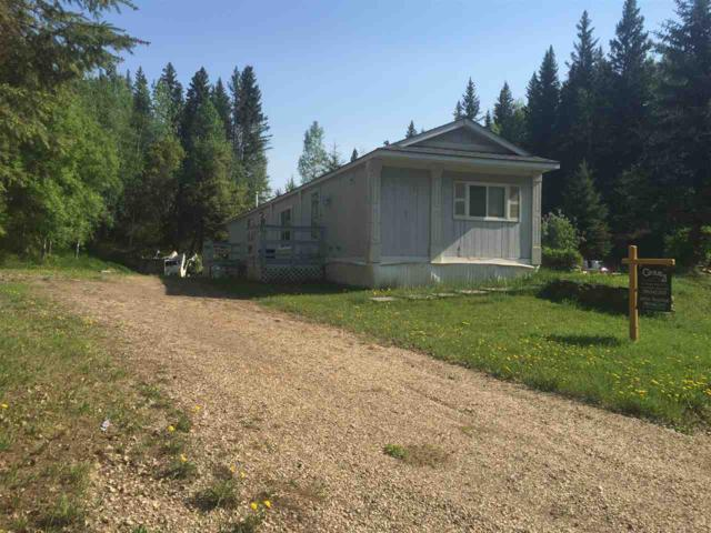 169 Birchwood Country Condo, Rural Brazeau County, AB T0C 1W0 (#E4138039) :: The Foundry Real Estate Company