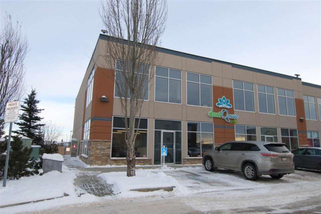 2907 Ellwood Dr SW, Edmonton, AB T6X 0B1 (#E4138381) :: Müve Team   RE/MAX Elite