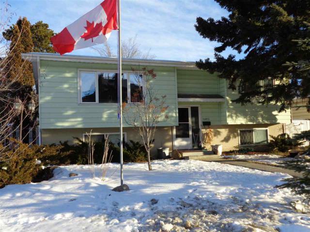 13815 74 Street, Edmonton, AB T5C 0X9 (#E4138539) :: Müve Team | RE/MAX Elite