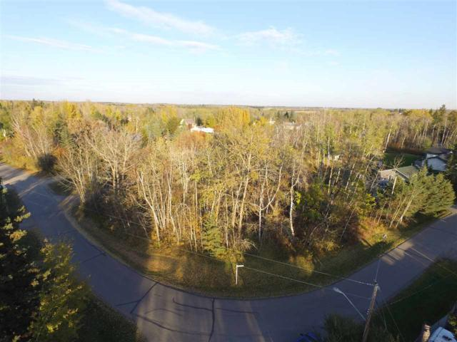 816 Lakeside Drive, Rural Parkland County, AB T7Z 2V8 (#E4139328) :: The Foundry Real Estate Company