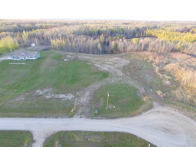14A-54013 Range Road 30, Rural Lac Ste. Anne County, AB T0E 1V0 (#E4139503) :: The Foundry Real Estate Company