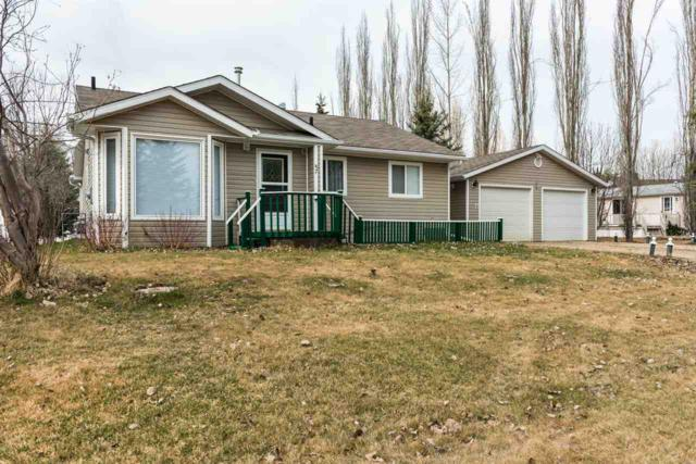 67 Birchwood Village Green, Rural Brazeau County, AB T7A 1R9 (#E4139840) :: The Foundry Real Estate Company
