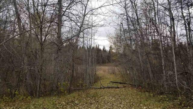 18 51330 RGE RD 271, Rural Parkland County, AB T7Y 1H1 (#E4139964) :: The Foundry Real Estate Company