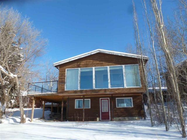 225 51268 Range Rd 204, Rural Strathcona County, AB T8G 1E9 (#E4140441) :: The Foundry Real Estate Company