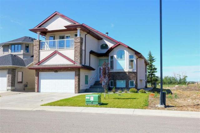 17512 110 Street, Edmonton, AB T5X 0B7 (#E4141185) :: The Foundry Real Estate Company