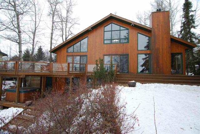 209 Grandview, Rural Wetaskiwin County, AB T0C 2V0 (#E4141538) :: The Foundry Real Estate Company