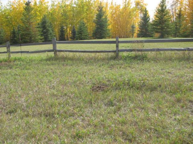 17-25515 Twp Rd 511A Road, Rural Parkland County, AB T7Y 1A8 (#E4141925) :: The Foundry Real Estate Company