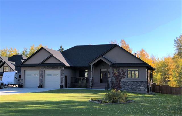 #401, 49119 RR73, Rural Brazeau County, AB T7A 0B9 (#E4141997) :: Initia Real Estate