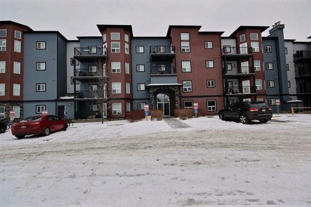 303 392 Silver_Berry Road, Edmonton, AB T6T 0H1 (#E4142516) :: Müve Team   RE/MAX Elite