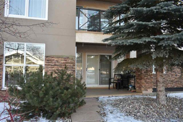 106 8956 156 Street, Edmonton, AB T5R 5Z6 (#E4142559) :: Müve Team | RE/MAX Elite