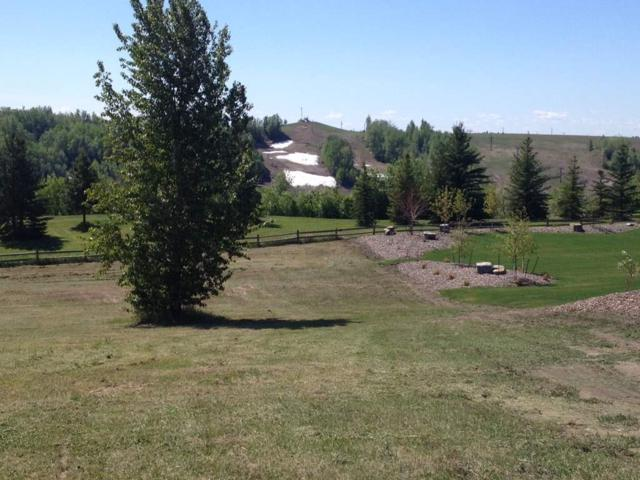 31-25515 Twp Rd 511 A, Rural Parkland County, AB T7Y 1A8 (#E4142683) :: Initia Real Estate