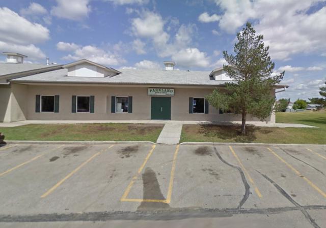 #30 53222 RR272 RD, Rural Parkland County, AB T7X 3N4 (#E4142800) :: Müve Team   RE/MAX Elite