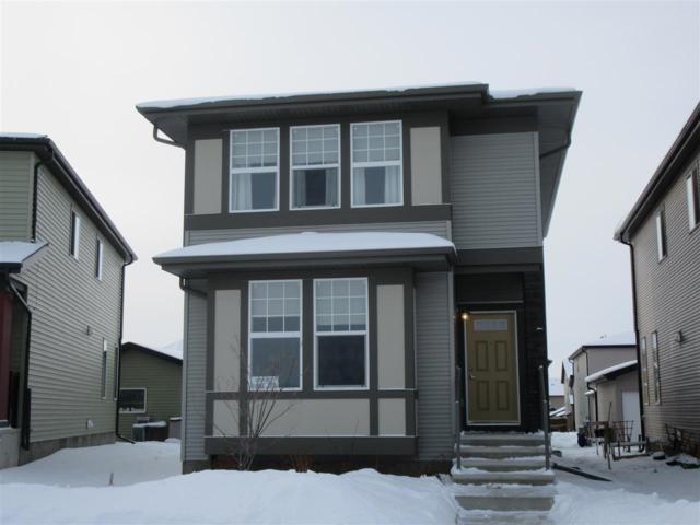 18108 75 Street, Edmonton, AB T5Z 0M2 (#E4144176) :: The Foundry Real Estate Company