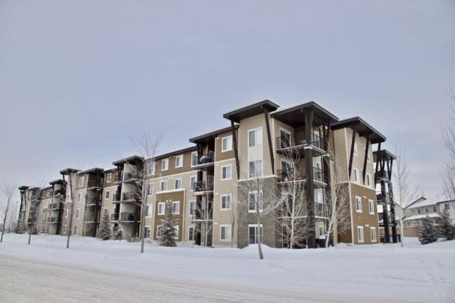101 530 Watt Boulevard, Edmonton, AB T6X 1P7 (#E4144180) :: Müve Team | RE/MAX Elite