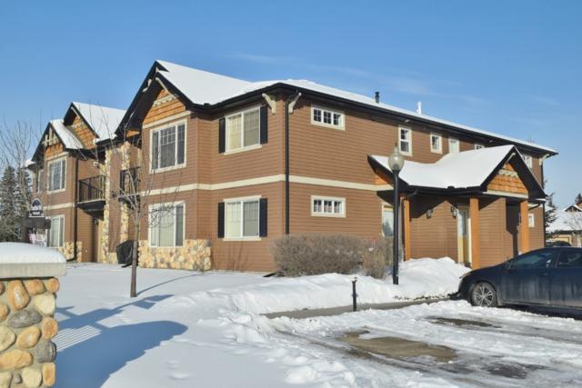 39 671 Silver_Berry Road, Edmonton, AB T6T 0B7 (#E4144515) :: Müve Team   RE/MAX Elite