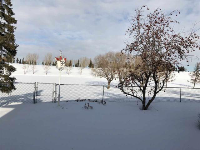 149 Grand Meadow Crescent, Edmonton, AB T6L 1X1 (#E4145269) :: The Foundry Real Estate Company