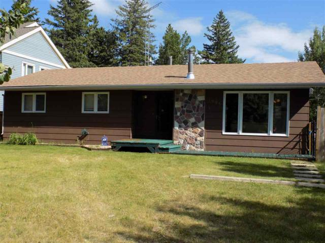 1006 1 AVENUE, Rural Wetaskiwin County, AB T0C 1X0 (#E4145626) :: Initia Real Estate