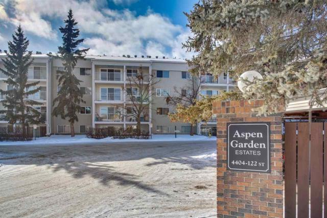 206 4404 122 Street, Edmonton, AB T6J 4A9 (#E4146134) :: The Foundry Real Estate Company
