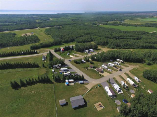 #39 Pigeon Lake Escapes, Rural Wetaskiwin County, AB T0C 2V0 (#E4146362) :: The Foundry Real Estate Company