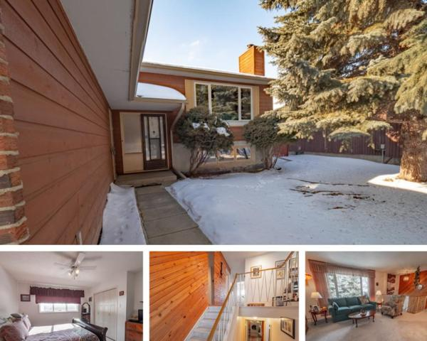 6 Allison Place, St. Albert, AB T8N 3A1 (#E4146929) :: The Foundry Real Estate Company