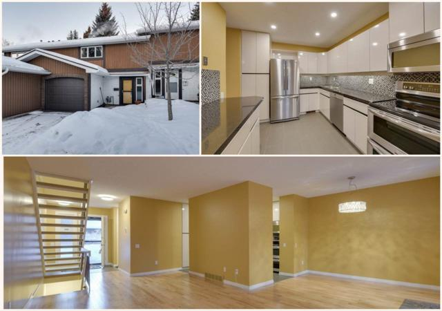 81 Hearthstone, Edmonton, AB T6H 5E5 (#E4146969) :: The Foundry Real Estate Company