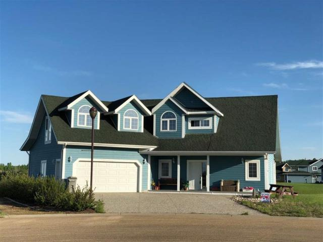 6 Sunset Harbour, Rural Wetaskiwin County, AB T0C 2V0 (#E4147259) :: The Foundry Real Estate Company