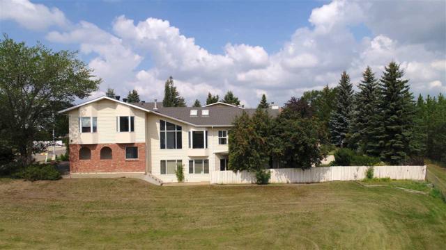 10503 74 Street, Edmonton, AB T6A 3Y2 (#E4147353) :: The Foundry Real Estate Company