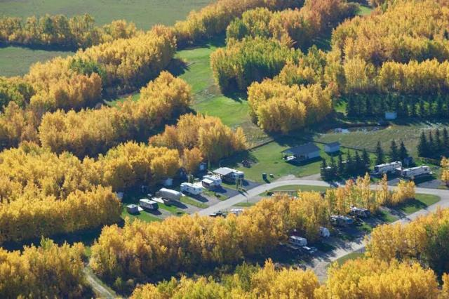 12 Pigeon Lake Escapes, Rural Wetaskiwin County, AB T0C 2V0 (#E4147537) :: The Foundry Real Estate Company