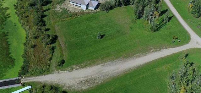 11 Silversprings Drive, Rural Wetaskiwin County, AB T0C 0T0 (#E4147598) :: Initia Real Estate