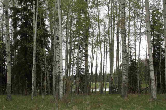 33 Silversprings, Rural Wetaskiwin County, AB T0C 0T0 (#E4147604) :: Initia Real Estate