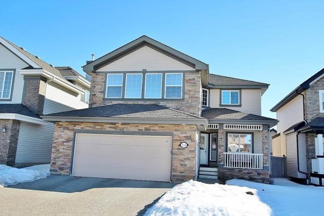 1168 Goodwin Circle, Edmonton, AB T5T 6W5 (#E4147712) :: The Foundry Real Estate Company