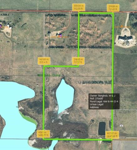 RR 124 TWP 442, Sedgewick, AB T0B 4C0 (#E4149401) :: The Foundry Real Estate Company