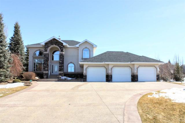 23-53302 Rge Rd 261, Rural Parkland County, AB T7Y 1A7 (#E4149545) :: David St. Jean Real Estate Group
