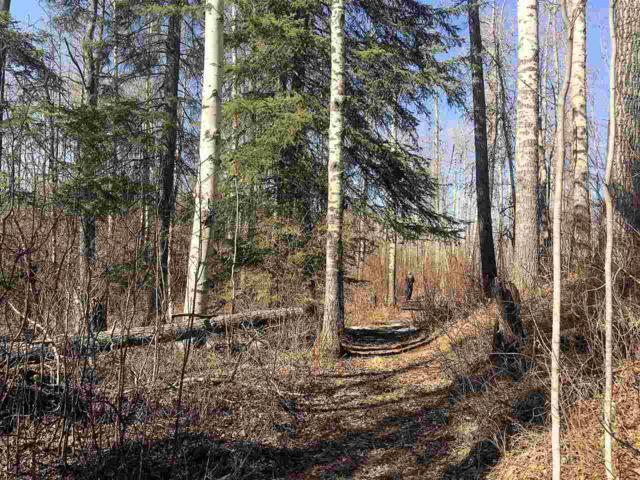 65-460002 Hwy 771, Rural Wetaskiwin County, AB T0C 2V0 (#E4149706) :: Initia Real Estate