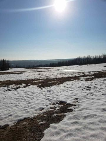 Rural Wetaskiwin County, AB T0C 1X0 :: Initia Real Estate