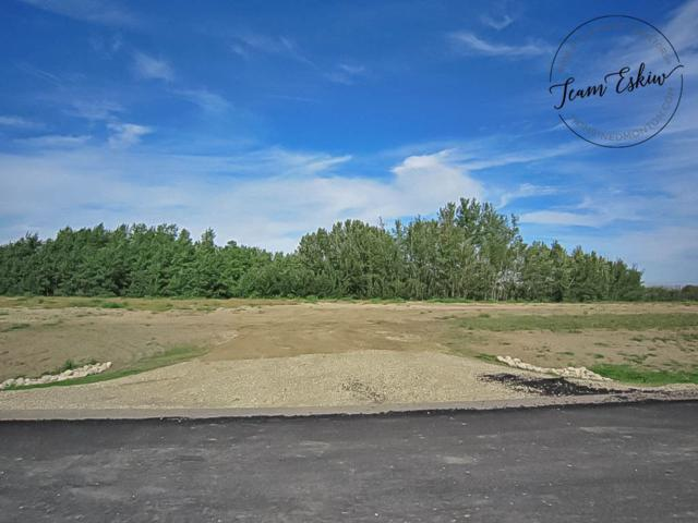 12-26107 Twp Rd 532 A, Rural Parkland County, AB T7Y 1A1 (#E4150632) :: David St. Jean Real Estate Group