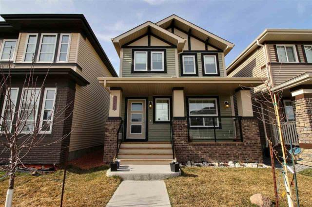 2349 Casey Crescent, Edmonton, AB T6W 3N1 (#E4152026) :: Mozaic Realty Group